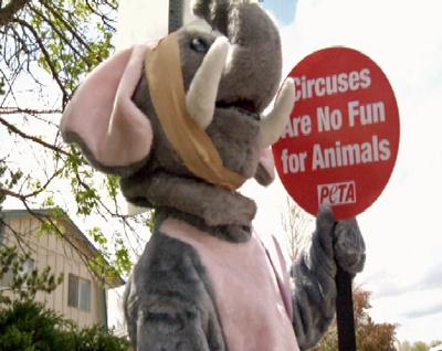 PETA Circus Protest Colorado Springs Elephant Cruel Cruelty