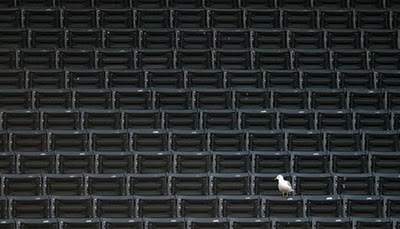 empty, chairs, crowd, audience