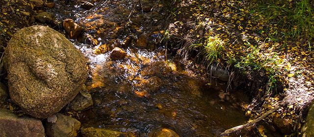 Bear Creek, creek, water, nature, park, Bear Creek Regional Park, Colorado Springs, El Paso County, Colorado