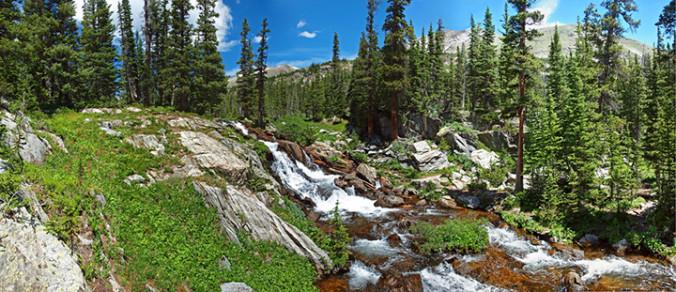 falls, nature, pines, pine trees, falls, water, natural capital, primary goods