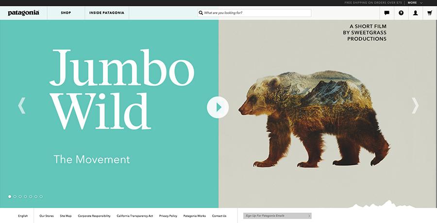 Patagonia, Patagonia.com, Jumbo Wild, homepage, website, Keep Jumbo Wild